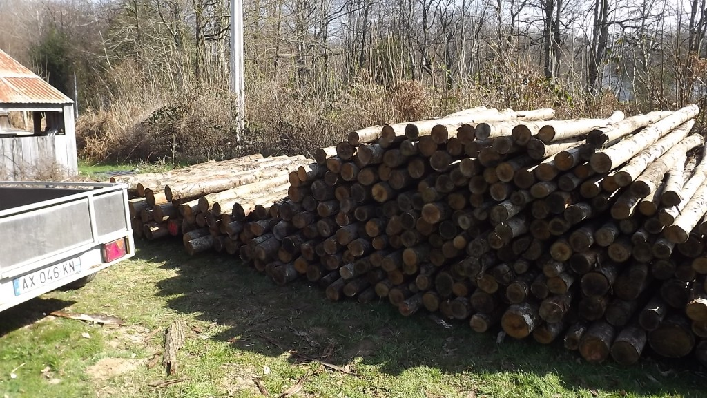 Hout (16)