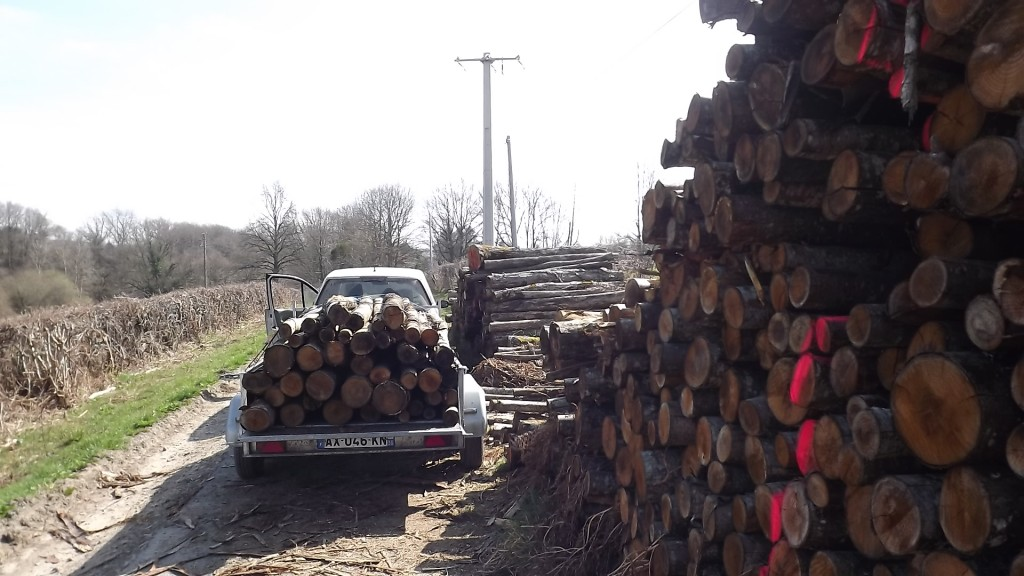 Hout (17)