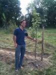 Tim's Tree